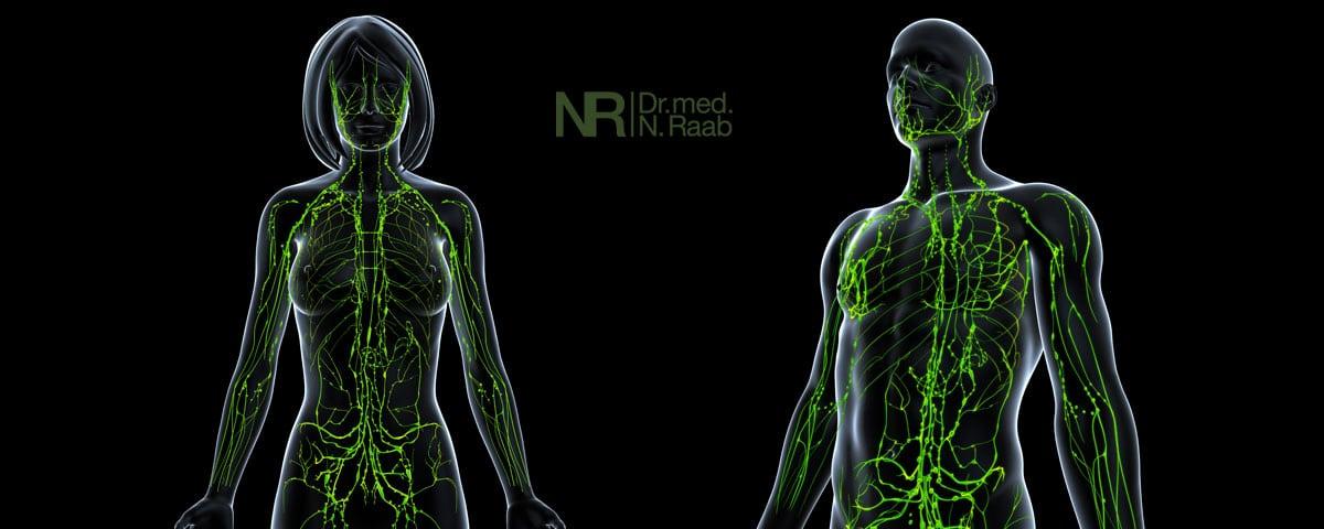 Lipödem, Lymphsystem und Lymphödem